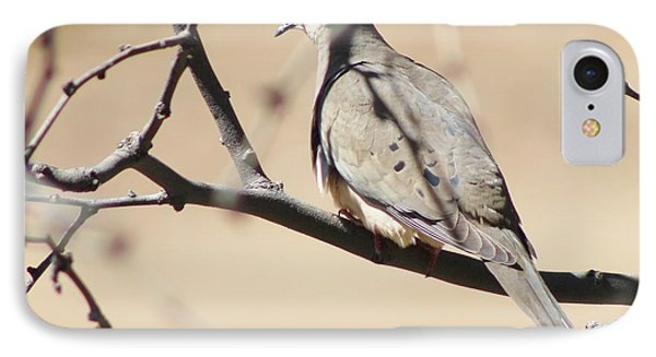 Camouflaged Mourning Dove IPhone Case