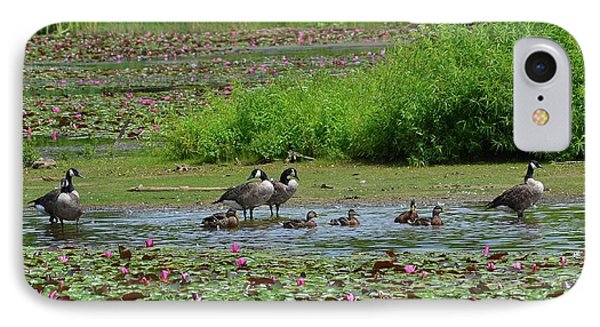 Canada Goose And Family  IPhone Case