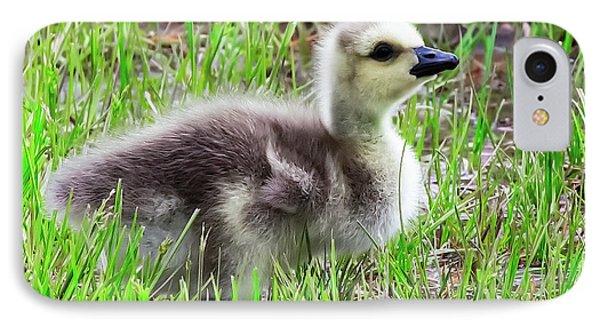 Canada Goose Gosling IPhone Case