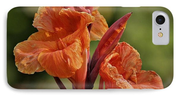 Canna Lily 2945_3 IPhone Case