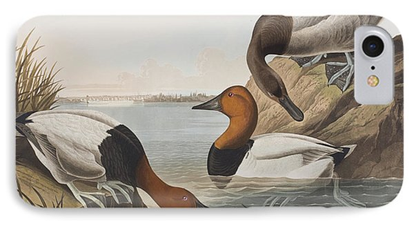 Canvas Backed Duck IPhone Case