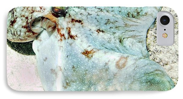 Caribbean Reef Octopus - Eyes Of The Deep IPhone Case