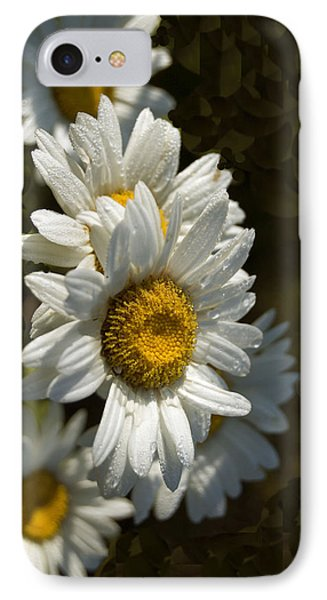 Cascading Daisy IPhone Case