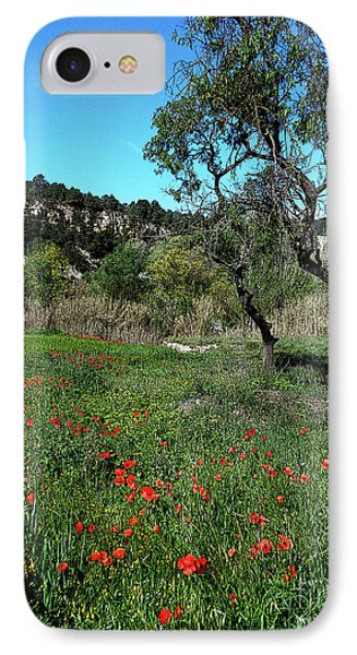 Catalan Countryside In Spring IPhone Case