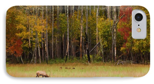 Cataloochee Valley Elk IPhone Case