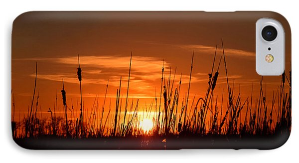 Cattails And Twilight IPhone Case