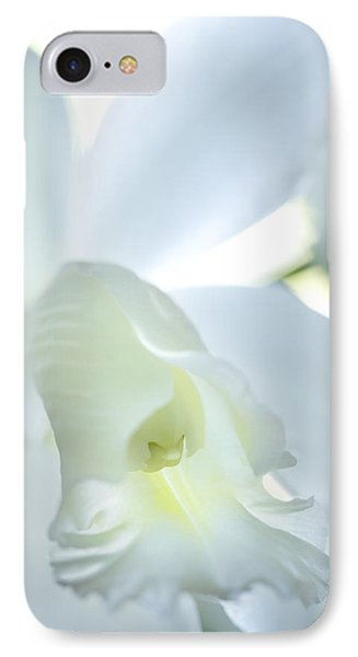Cattleya Orchid #1 IPhone Case