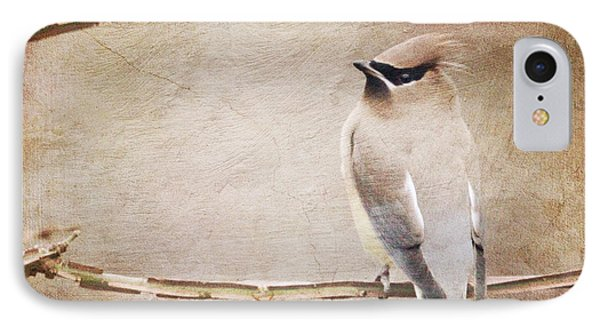 Cedar Waxwing Painting Effect IPhone Case