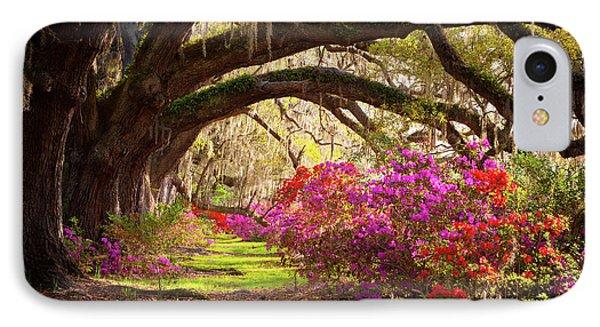 Charleston Sc Magnolia Plantation Gardens - Memory Lane IPhone Case