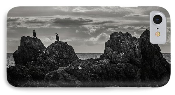Chatting On Rocks IPhone Case