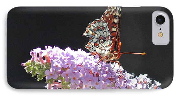 Checkerspot Butterfly IPhone Case