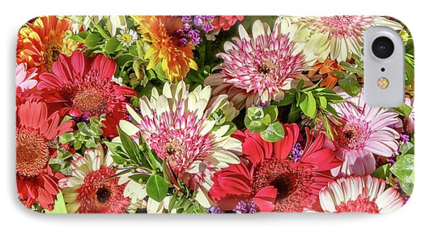 Cheerful Spring Collection - Gerbera Daisies IPhone Case
