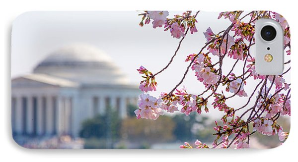 Cherry Blossoms And Jefferson Memorial IPhone Case
