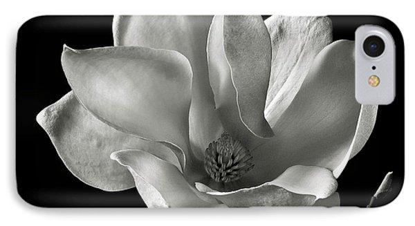 Chinese Magnolia IPhone Case