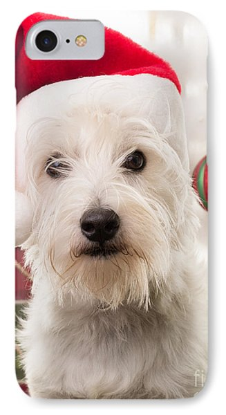 Elf iPhone 8 Case - Christmas Elf Dog by Edward Fielding