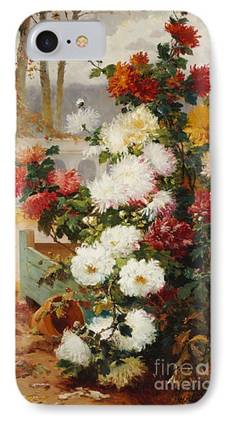 Chrysanthemums In A Walled Garden IPhone Case