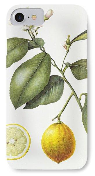 Citrus Bergamot IPhone Case