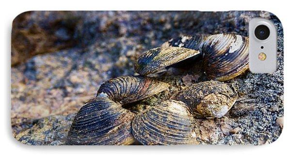 Clam Shells IPhone Case