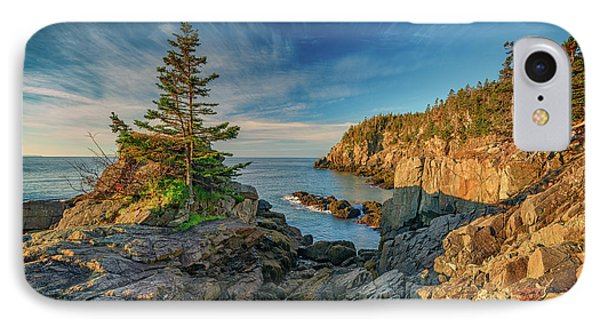 Cliffs Of Quoddy Head State Park IPhone Case