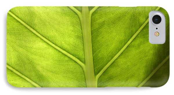 Close-up Of A Elephant Ear IPhone Case
