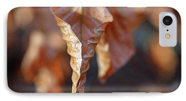 Close-up Of Autumn Leaf IPhone Case