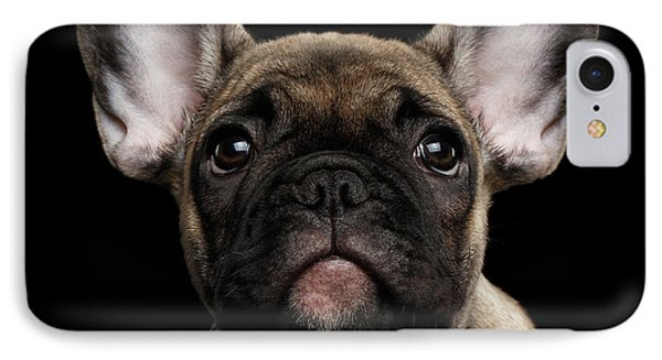 Dog iPhone 8 Case - Closeup Portrait French Bulldog Puppy, Cute Looking In Camera by Sergey Taran
