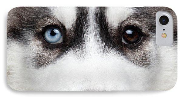 Dog iPhone 8 Case - Closeup Siberian Husky Puppy Different Eyes by Sergey Taran