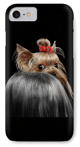 Dog iPhone 8 Case -  Closeup Yorkshire Terrier Dog, Long Groomed Hair Pity Looking Back by Sergey Taran