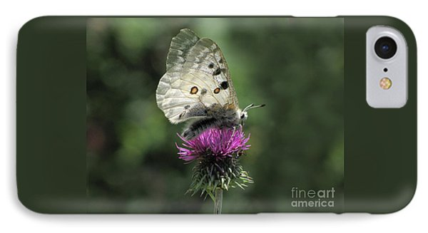 Clouded Apollo Butterfly IPhone Case