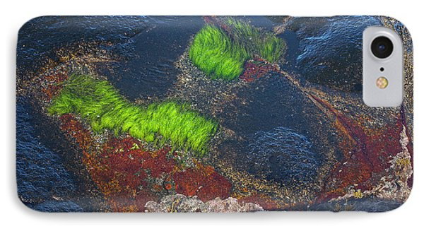 Coastal Floor At Low Tide IPhone Case