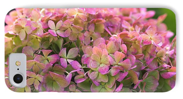 Color-changing Little Lime Hydrangea IPhone Case