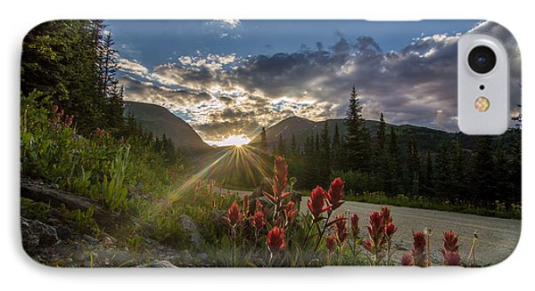 Colorado Wildflowers Under Evening Sun IPhone Case