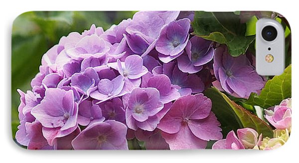 Colorful Hydrangea Blossoms IPhone Case