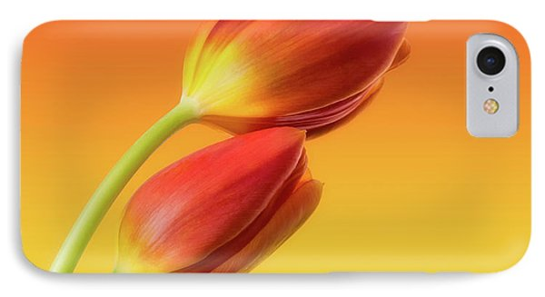 Beautiful iPhone 8 Case - Colorful Tulips by Wim Lanclus