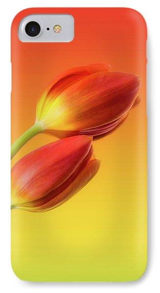 Tulip iPhone 8 Case - Colorful Tulips by Wim Lanclus