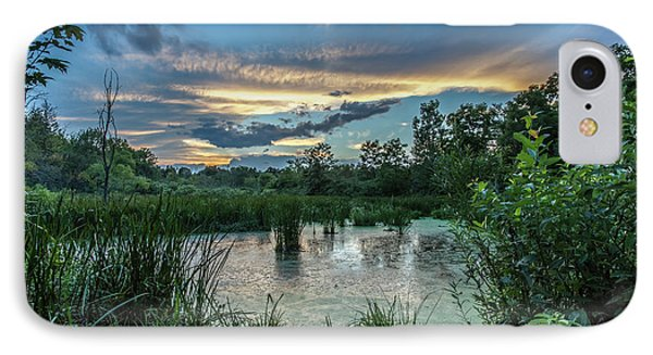 Columbia Marsh Sunset IPhone Case