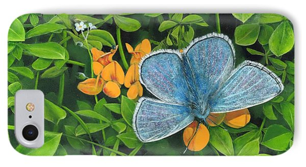 Common Blue On Bird's-foot Trefoil IPhone Case