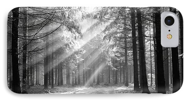 Conifer Forest In Fog IPhone Case