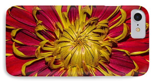 Core Of The Flower IPhone Case