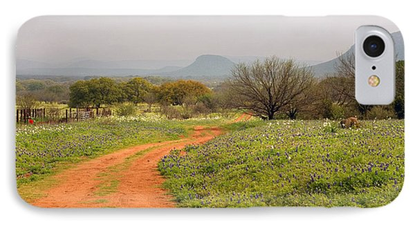 Country Road With Wild Flowers IPhone Case