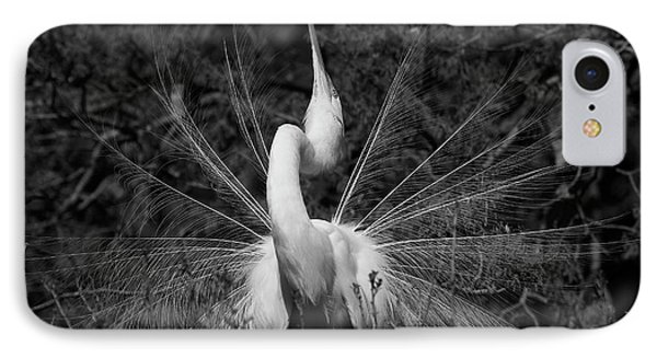 IPhone Case featuring the photograph Courtship Plumes by John F Tsumas