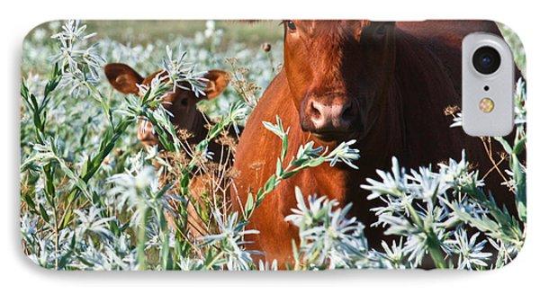 Cow Hide IPhone Case