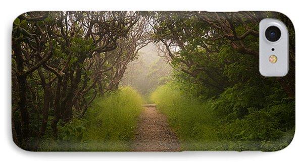 Craggy Pinnacle Trail Blue Ridge Parkway IPhone Case