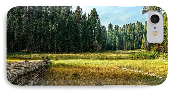 Crescent Meadows Sequoia Np IPhone Case
