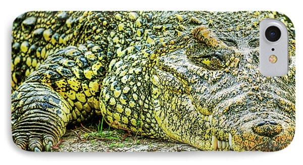 Cuban Croc IPhone Case
