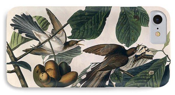 Cuckoo IPhone Case