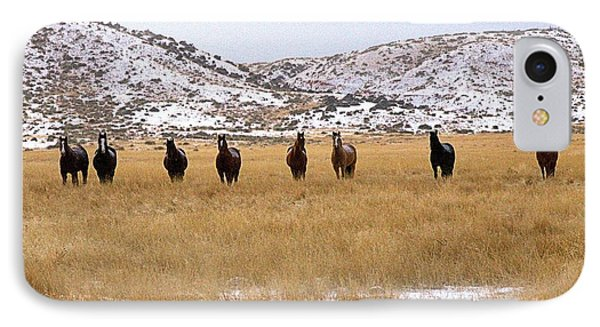 Curious Horses IPhone Case
