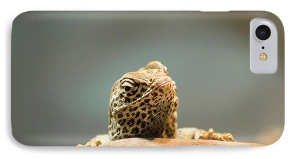 Curious Lizard IPhone Case