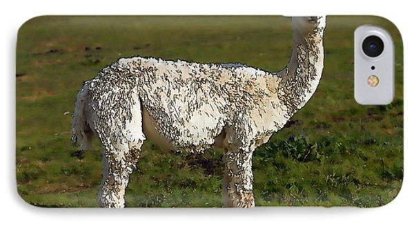 Cute Alpaca Like Llama In A Field Illustration Like Cartoon IPhone Case