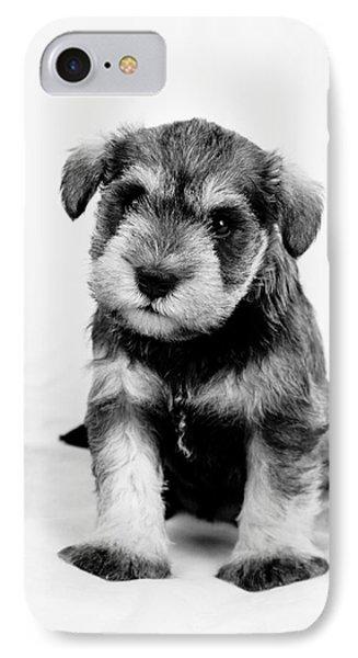 Cute Puppy 1 IPhone Case